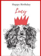 Dog Birthday Card - Springer Spaniel